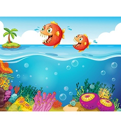 Two scary piranhas at the sea vector image