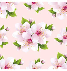 Nature seamless pattern with flowers sakura vector image vector image