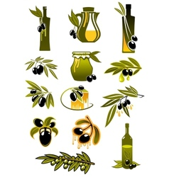 Olive oil bottles with branches and olives vector image