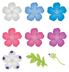 Color flower set vector