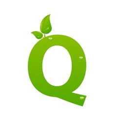 green eco letter q illiustration vector image