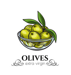 Olives in a bowl vector