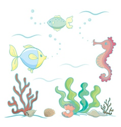 Sea animals and plants vector