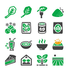 spinach icon vector image