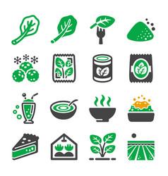 Spinach icon vector