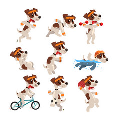 Cute sportive jack russell terrier set funny pet vector