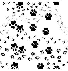 animal footprint seamless pattern vector image