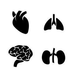 human organs simple related icons vector image