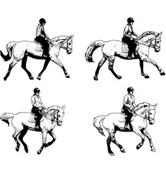 riding horses collection - sketch vector image