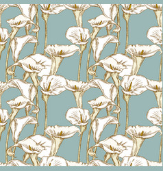 seamless background of calla lilies sketches vector image