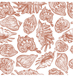 seashells on white background seamless pattern vector image