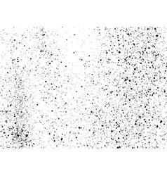 graffiti paint splatter pattern in black on white vector image vector image