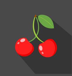 cherry cartoon flat icondark background vector image vector image