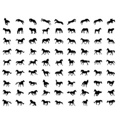 Big set of horses silhouettes vector
