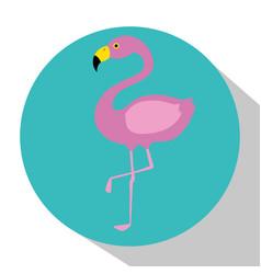 exotic flamingo bird vector image