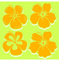 Hibiscus collection in yellow vector