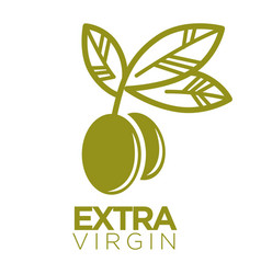 Olive oil extra virgin flat logotype on white vector