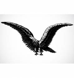 screaming eagle vector image