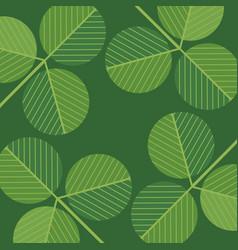 st patricks day design of shamrocks vector image