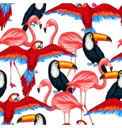 Tropical birds seamless pattern with parrots vector image