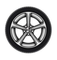 auto tyre or isolated automobile wheel on white vector image