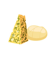 pieces of cheese fresh and healthy dairy product vector image