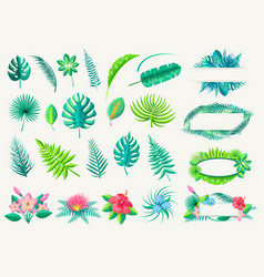 Tropical leaves and exotic flowers set on white vector