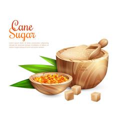 cane sugar pail background vector image