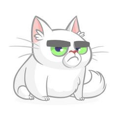 Cartoon grumpy white cat vector