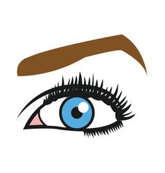 Female blue eyes mascara eyebrows eyelashes style vector