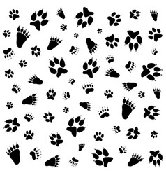 Footprints on white background vector