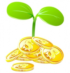 money growth vector image vector image