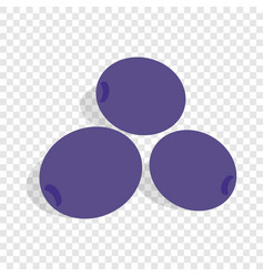 blue plum isometric icon vector image