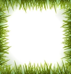 Realistic green grass like frame isolated on white vector image