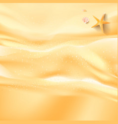 abstract background sand beah starfish shell and vector image vector image