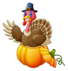 cartoon turkey with pilgrim hat in the pumpkin vector image