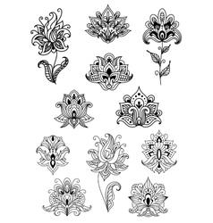 Paisley contoured flowers decorated ethno vector