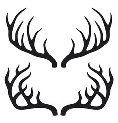 deer horns vector image
