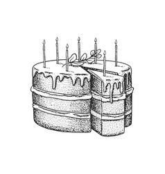 Birthday cake with candles fruit dessert or tart vector