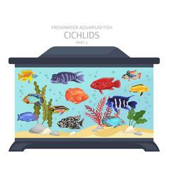 Cichlids fish freshwater aquarium fish icon set vector
