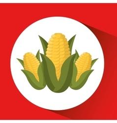 Farm countryside corn food design vector
