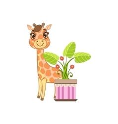 Giraffe Behind The Flower In Pot vector