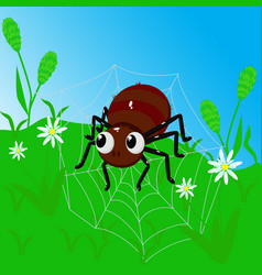spider on a web among grass vector image