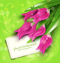 background with tulips vector image vector image
