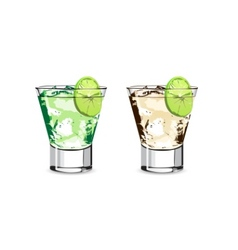 lime water vector image vector image