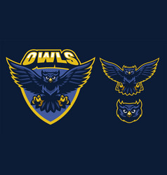 sport style of owl mascot vector image