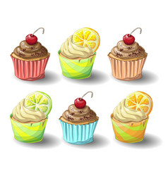 Set of capkakes hand draw chocolate and citrus vector