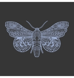 Amazing fly butterfly vector