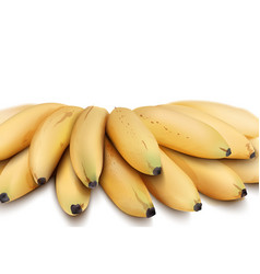 bananas isolated watercolor style exotic vector image