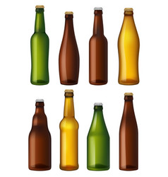 blank beer bottles colored glass containers vector image